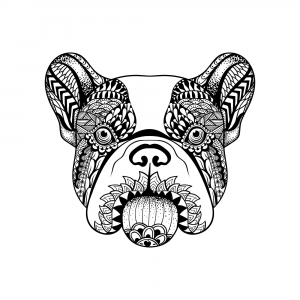Ink Collection 50x50 French Bulldog