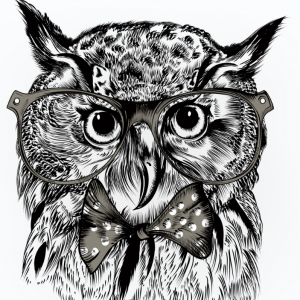 Panel z wadą 50x50 Hipster Owl