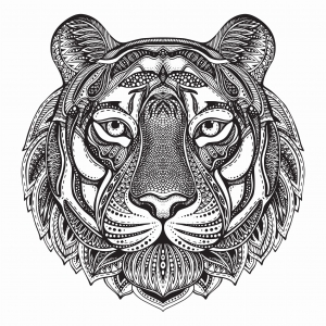 Ink Collection 50x50 Tiger